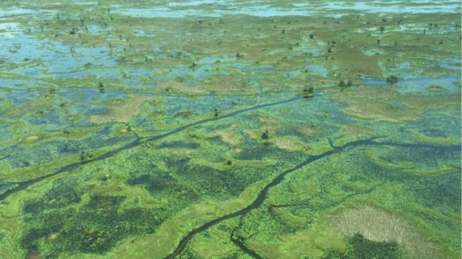 Much of southern Unity State lies in the floodplain of the Nile known as the Sudd - it's a vast swamp where tens of thousands of people fled the fighting which began in May
