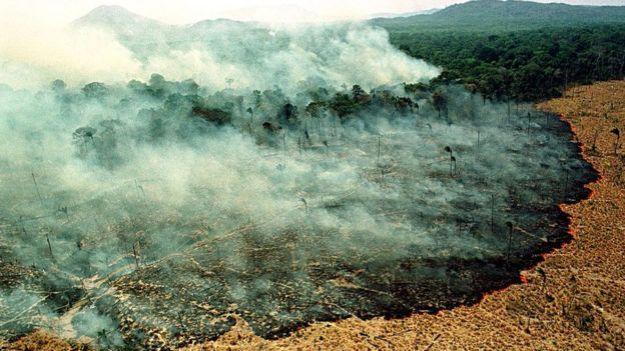 Incendio forestal en el estado de Roraima en marzo