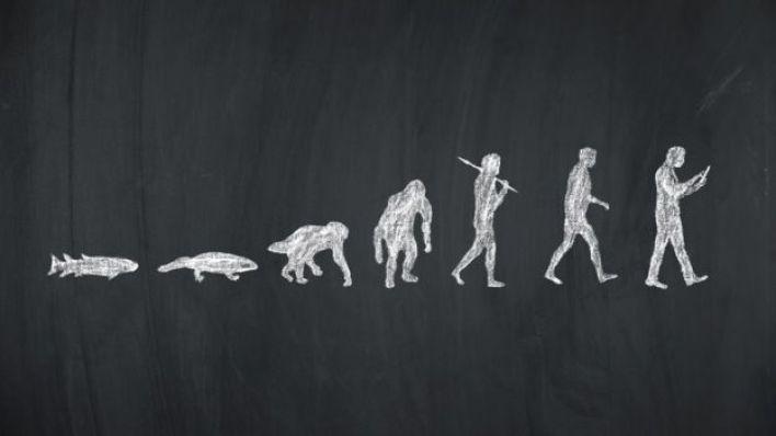 صورة توضيحية: التطور البشري - من السمكة إلى مستخدم الهاتف الذكي