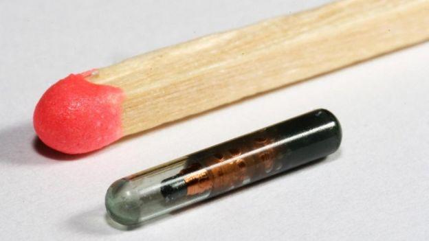 microchipao lado de fósforo