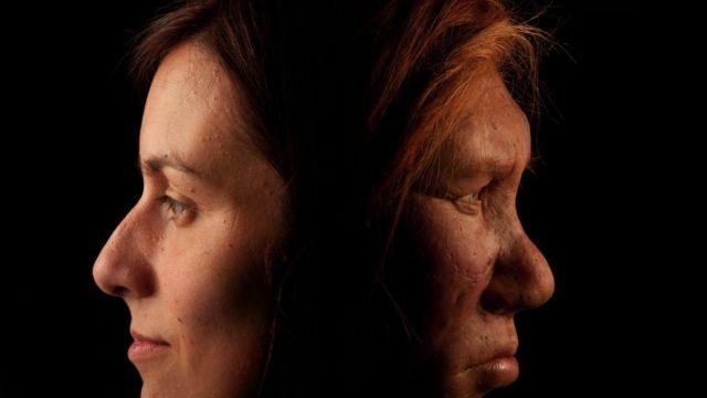 неандертальська жінка