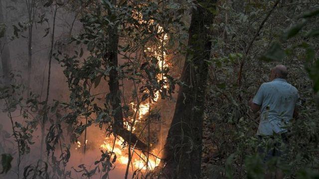 Homem de costas observa fogo na mata