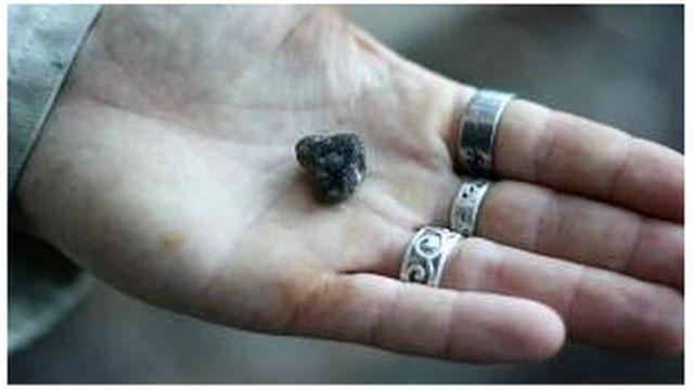 Ámbar gris en una mano