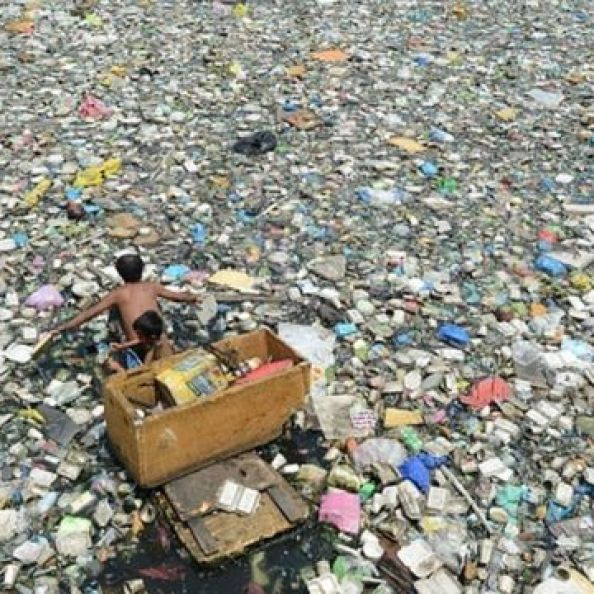 환경 단체들은 일회용 플라스틱 사용을 줄이기 위한 기업의 노력을 회의적으로 본다