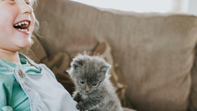 Niña con un gato