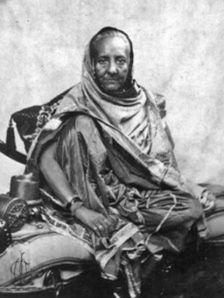 জিনাত মহলের এটিই একমাত্র ছবি যেটি অক্ষত রয়েছে। ছবিটি সম্রাটের বন্দী অবস্থার সময় রেঙ্গুনে তুলেছিলেন জেনারেল ম্যাকমোহান