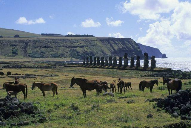 Cavalos na Ilha de Páscoa
