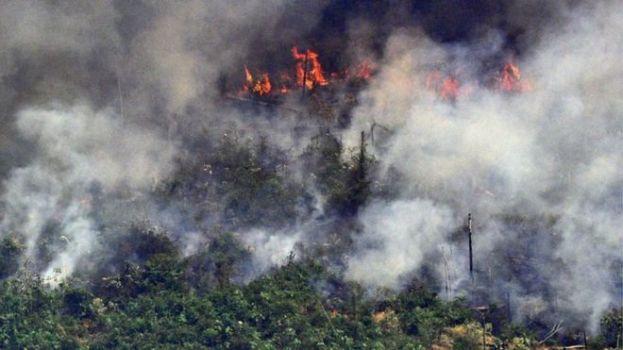 「ボルソナロ大統領 アマゾン火災」の画像検索結果
