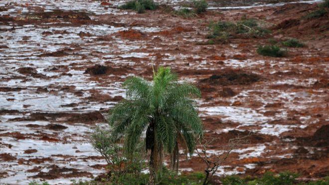 Região de Brumadinho atingida pelo rompimento de barragem da Vale