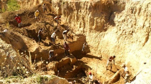 Haraaga Shimbirta waxaa laga helay webiga Christmas oo ku yaalla dalk Madagascar
