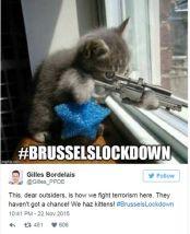 #brusselslockdown meme