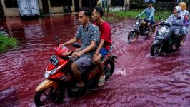 People ride motorbikes through a flooded road with red water due to the dye-waste from cloth factories, in Pekalongan, Central Java province, Indonesia
