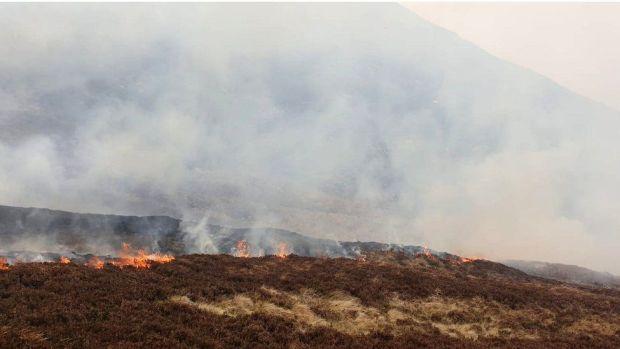 Gorse fire Mournes