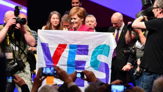 Sturgeon with Yes flag