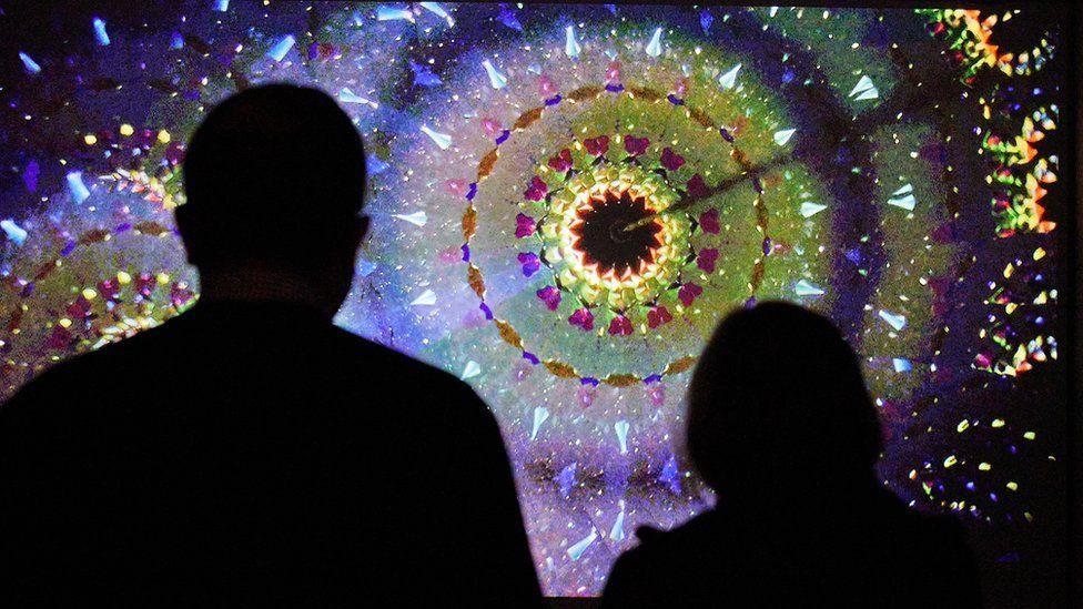 Kaleidoscope of Nature's Colours at Kew Gardens