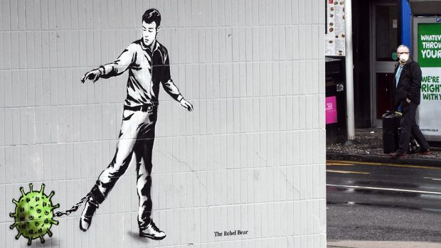 Rebel Bear graffiti in Edinburgh
