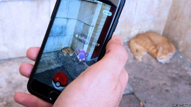 Cat in Pokemon Go game