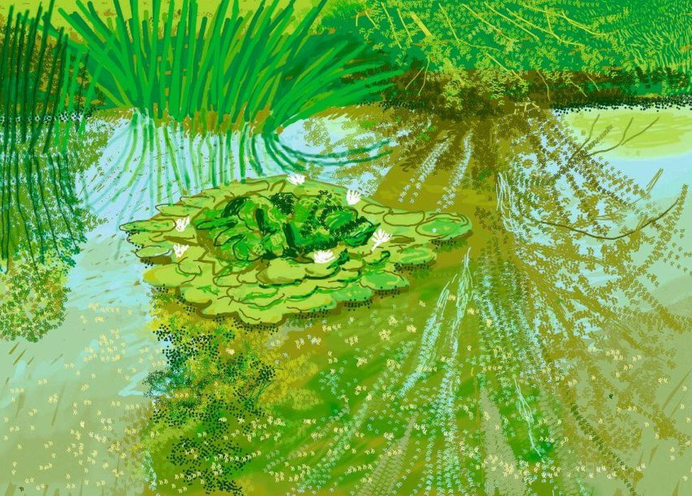 David Hockney's Waterlilies