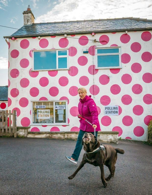 A woman and her dog walk past a polling station building that is covered in pink polka dots