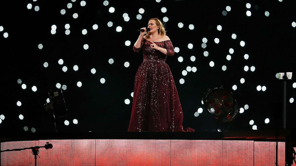 Adele was performing at Sydney's 83,000 capacity ANZ Stadium when the fan had a cardiac arrest