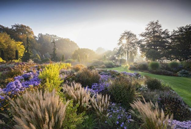 A sunlit view of a colourful garden