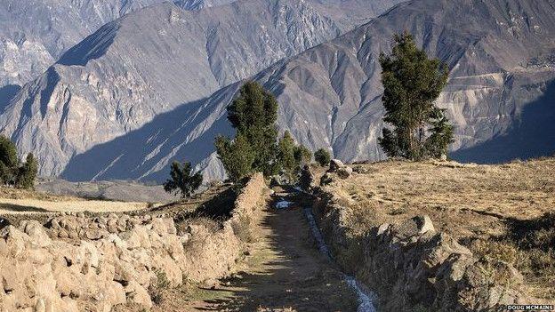 El camino de los incas