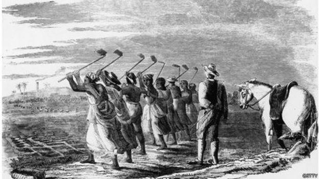 Esclavos en una plantación, ilustración