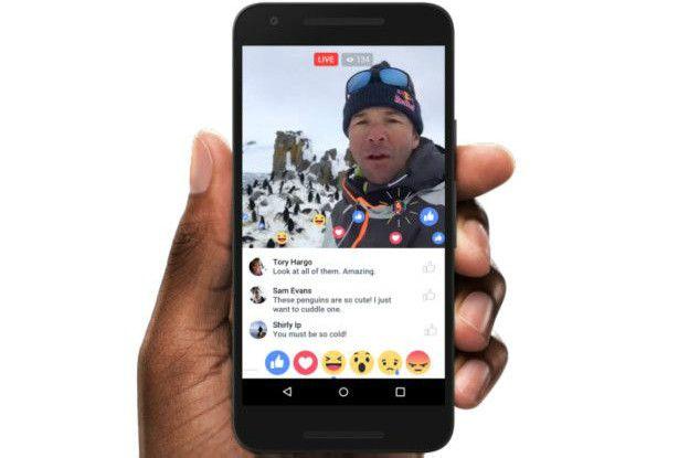 Una persona viendo Facebook