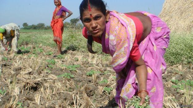 ग्रामीण महिलाएं, किसान, दक्षिण भारत