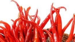 Chile rojo picante