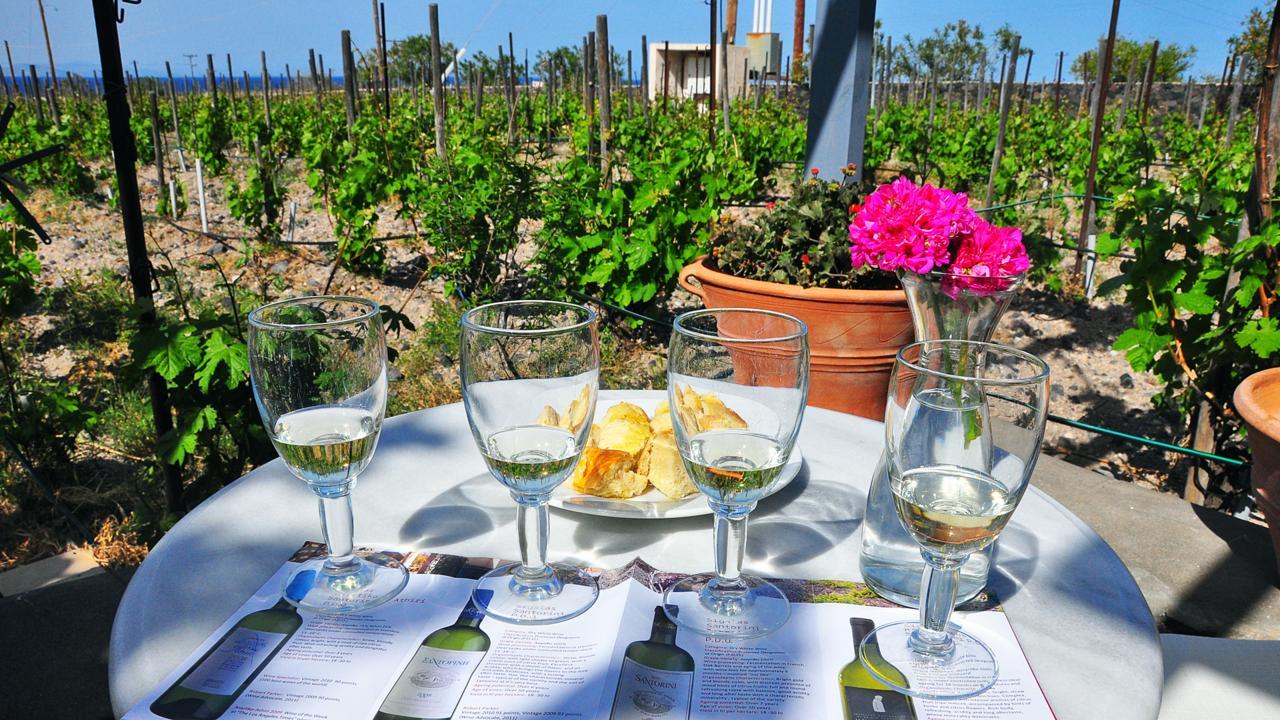 Santorini, wines, wineries, Domaine Sigalas, assyrtiko (Credit: Amanda Ruggeri)