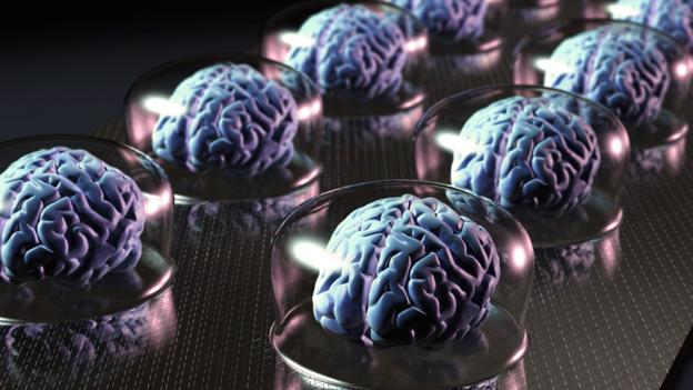Will we ever… simulate the human brain?