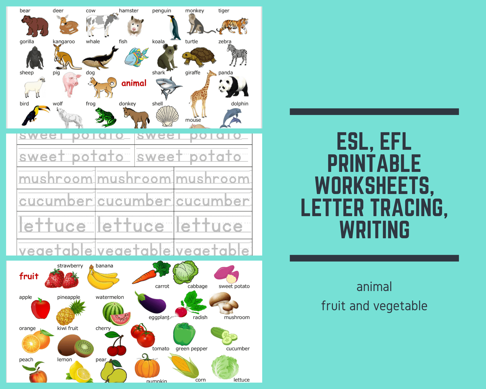 Teaching Resources Esl Efl Downloadable Printable