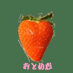 イチゴ探偵|おとめ心品種図鑑