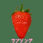 イチゴ探偵|ラブソング品種図鑑・断面図