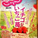 イチゴ探偵 関東・東北じゃらん3月号「イチゴいちご苺大特集」いちご狩り&ビュッフェページ監修!苺情報満載です!