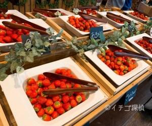 【セントレジスホテル大阪】いちごビュッフェ「ストロベリー・ブティック」10種の生苺が食べ放題!