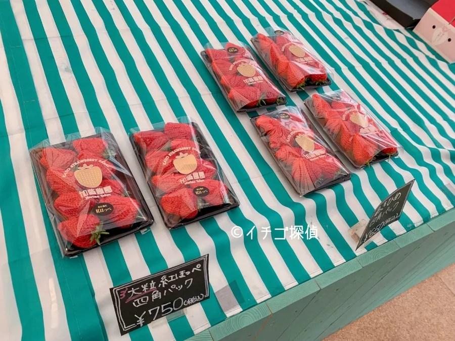 【加藤農園】都内で夜のいちご狩り!東京都練馬区で特大いちごを堪能!