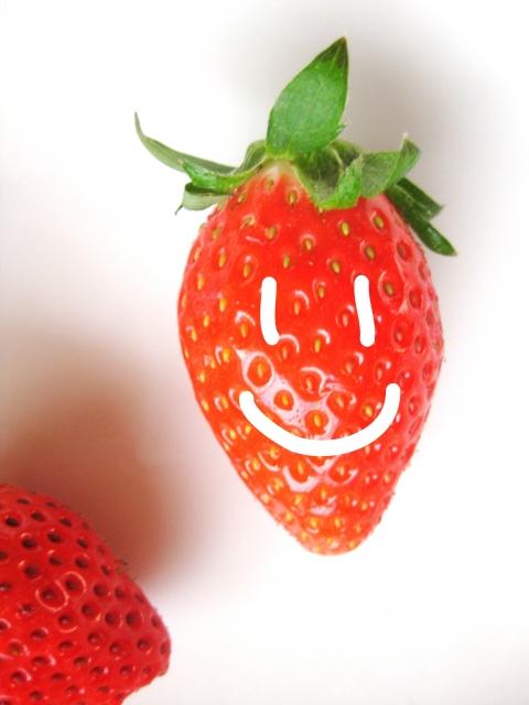 個人的に気になるイチゴの加工食品!!