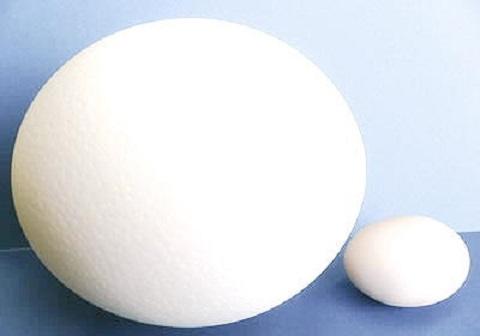 ダチョウ 卵 割り方