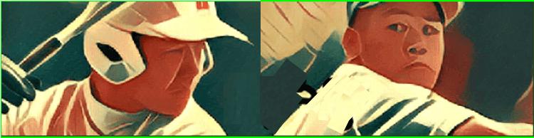 甲子園 俺 の 俺の甲子園~ばばめ監督の超過勤務