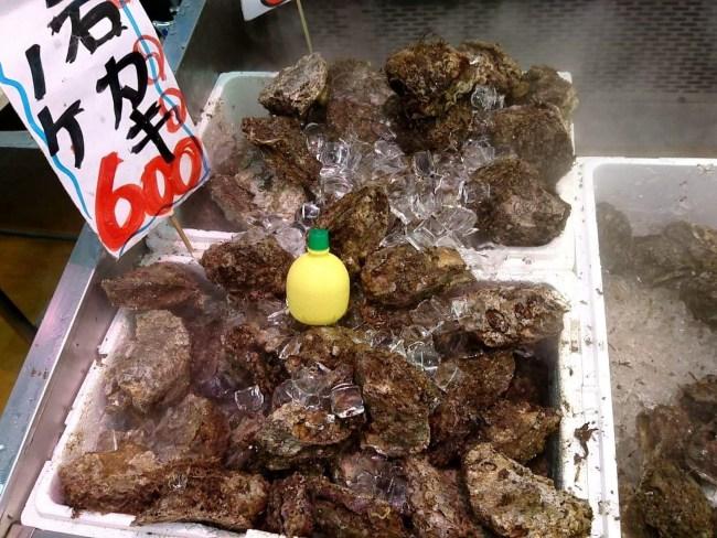 天然 岩牡蠣 販売中