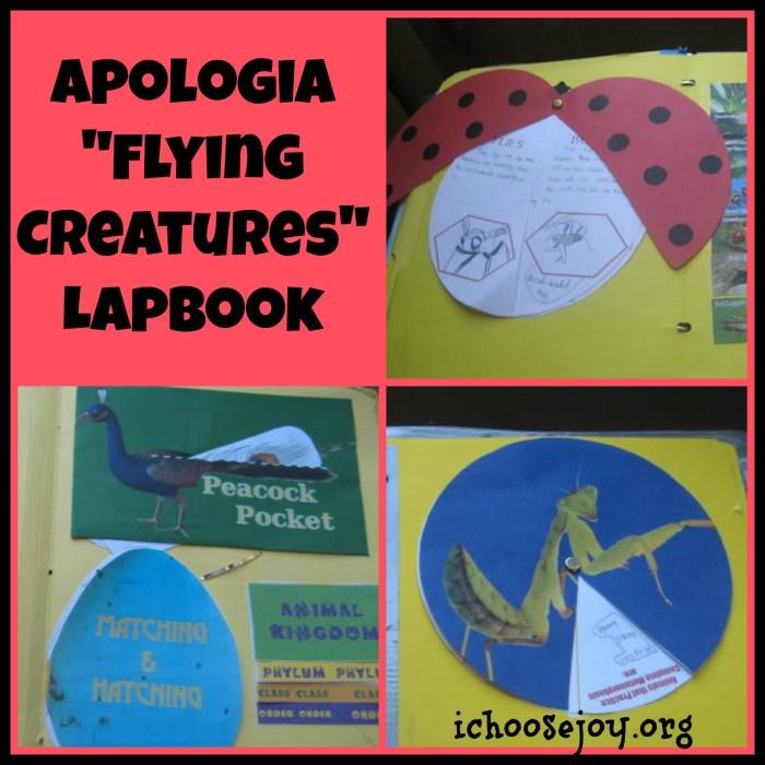 Apologia Flying Creatures (Zoology 1) Lapbook