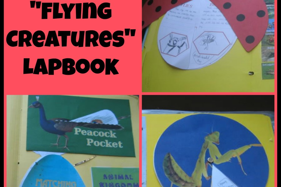 Apologia Flying Creatures Lapbook for your homeschool elementary science time, from I Choose Joy!