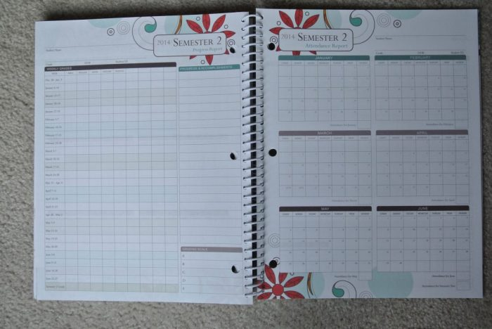 Fourth of July Well-Planned Day Planner 078