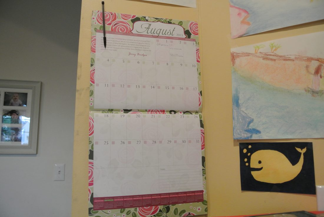 Review/Giveaway of 2 Well-Planned Day Homeschool Planners!