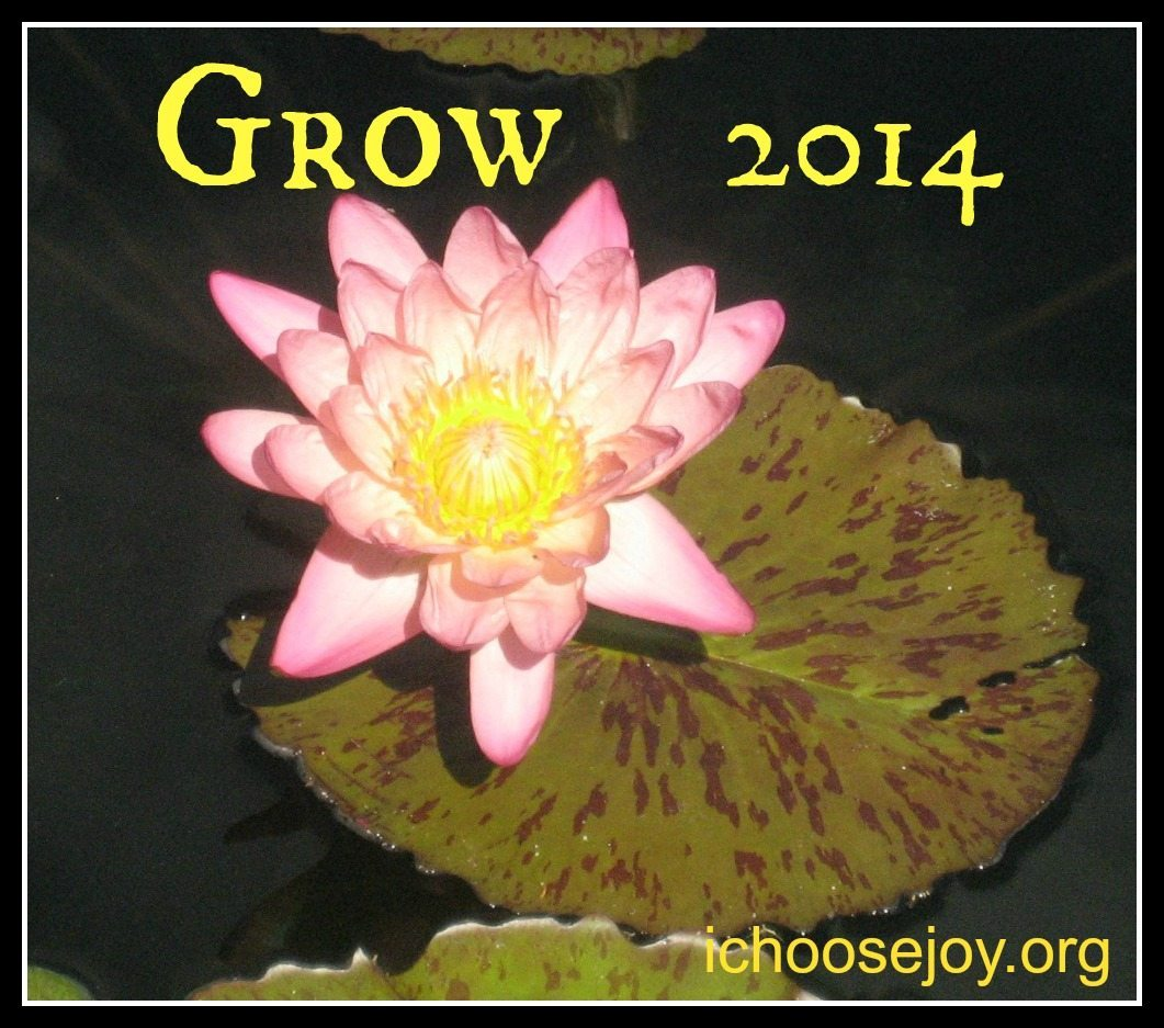 My Word and Scripture for 2014/ Top Posts of 2013