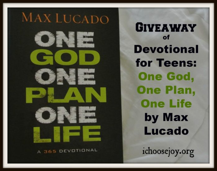 "Review/Giveaway ""One God, One Plan, One Life: A 365 Devotional"" by Max Lucado"