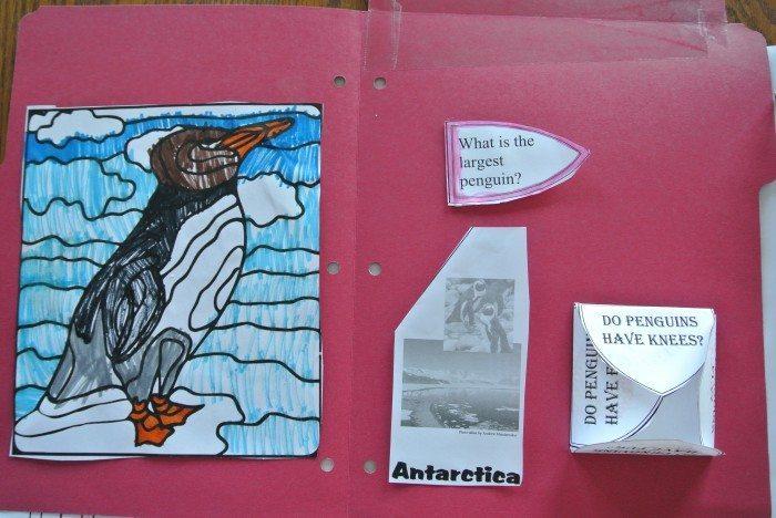Penguin lapbook 017