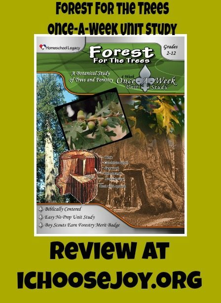 Forest for the Trees Unit Study review